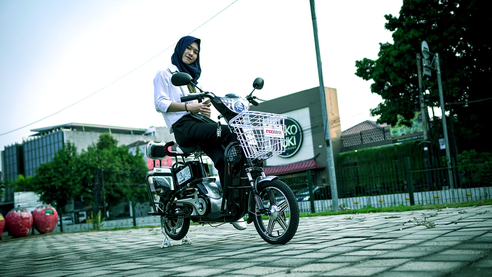 Sepeda Listrik Indobike